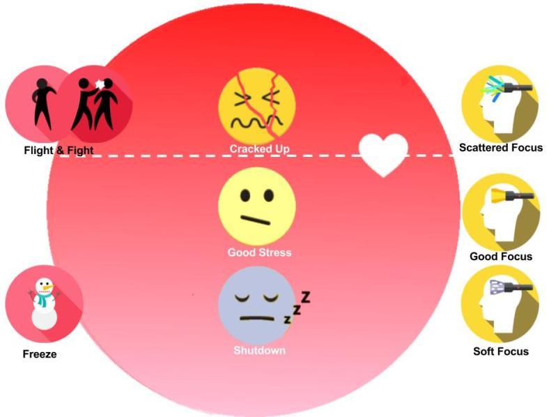 Stress & focus (4)